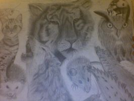 real animals - art GCSE by Luifex