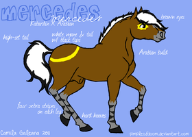 Mercedes Reference - 2011 by camiif3tt