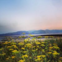 great orme mountains by NeoJoeArt1997