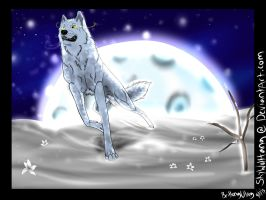 The Seeker. ~Wolf's Rain by skywolffang