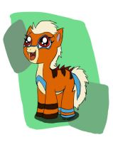 Iggy Pony for Rocket by Bloomins