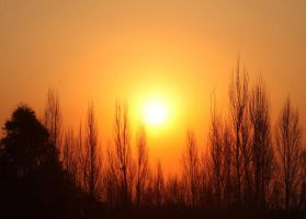 Johannesburg Sunset by erene