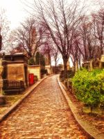 4HDR Pere Lachaise Paris 4 by jdesigns79