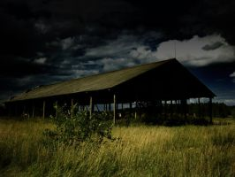 shed by megadef