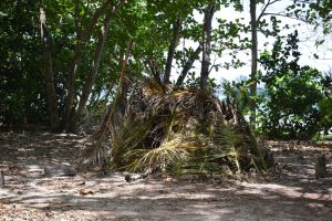 Hut with coconut leaves by A1Z2E3R