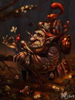 Old Gnome by Traaw