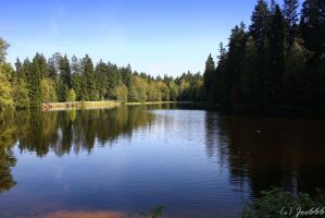 Lake in the wood by deaconfrost78