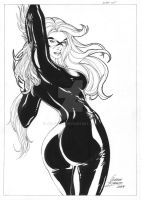 Black Cat - 001 by jgledson