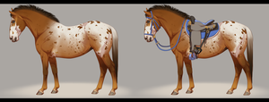 Roulette - Criollo Mix Mare - Ref Sheet by BH-Stables
