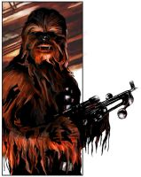 Chewbacca : Colours by salvagion