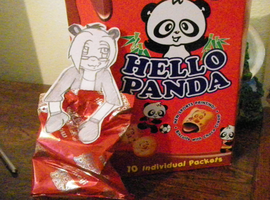 Helo panda paper child uncolor by kayebear