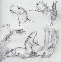 Soil Ecology: lecture sketches by Eurwentala