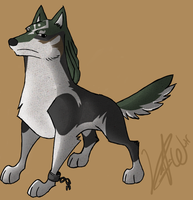 WW Twilight Wolf Link by RolePlayWulf