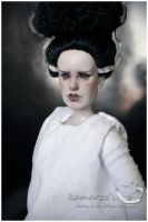 The Bride Of Frankenstein 3 by kamarza