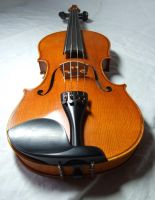 violin 6 by sacral-stock