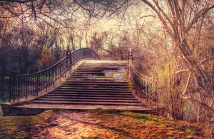 Rustic Bridge STOCK by JeffreyDobbs