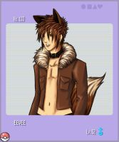 No.133 Eevee by bourgogne