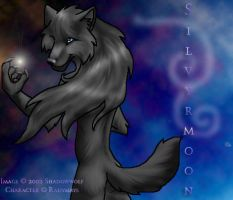 Silvryrmoon by Shadowwolf