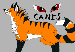 Canis-Adoptable by Panthakitty
