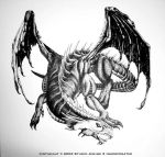 Dragon via Pen and Ink by jenime