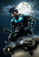 Nightwing (colors) by FantasticMystery