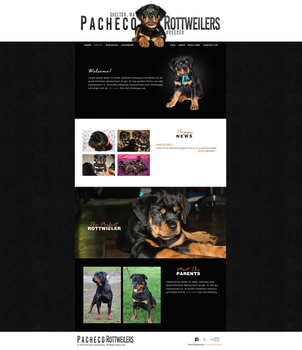 Pacheco Preview by fireproofgfx