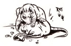 Vesperian Bestiary: Rat by MoonsongWolf