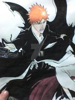 Closer look Ichigo by victoriapieroni