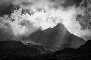 BW by carlosthe