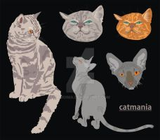 catmania by Shiroima