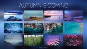 Autumn Is Coming ~ WallPack by Te0SX