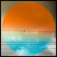 Solitary Sky, OR... Bird on a Wire by ENTITY-JS