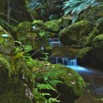 The Brook - Terrace Falls by MarkLucey