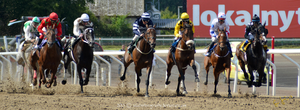 Horse Racing 10 by JullelinPhotography