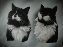 Tinker and Cracker by petportraitman