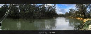 Murray River by Dyer-Consequences