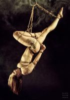 Orchid Suspended by BlackRoomPhoto