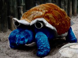 Realistic Pokemon Blastoise by GhostOfPardition