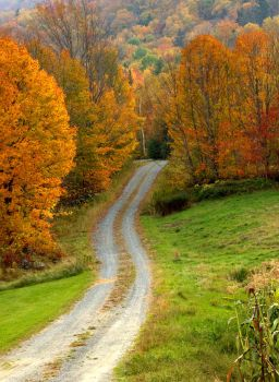 Fall in New Hampshire by ljbeau