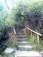 Stairway into the unknown by Nyghtprowler