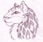 Snow leopard by Sephiroth-Strife