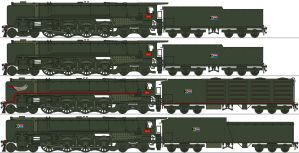 South African Railways 4-8-4s by Lapeer