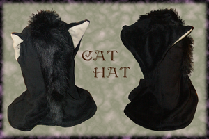 Cat Hat by SagandeTeam