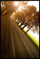 autumn road by ssilence