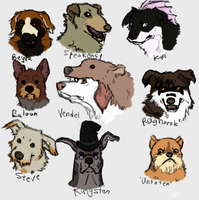 Curs: heads1 by Pred-Adopts
