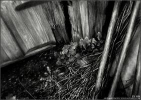 Fragment of Life by NutaNeurotic