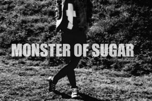 monster of sugar by pixie-you