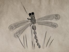 dragonfly by D905