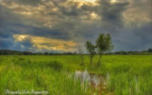 Hungarian landscapes. HDR-picture.  (soft) by magyarilaszlo