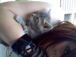 Me and my kitten. ^^ :3 by xXRomance-Is-AliveXx